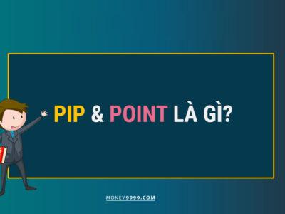 Pip Point là gì?